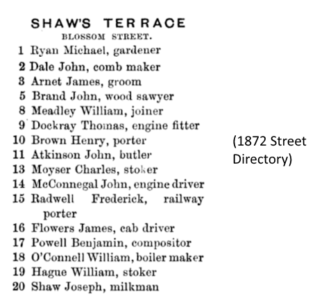 1872-street-directory-extract-shaws-terrace-york