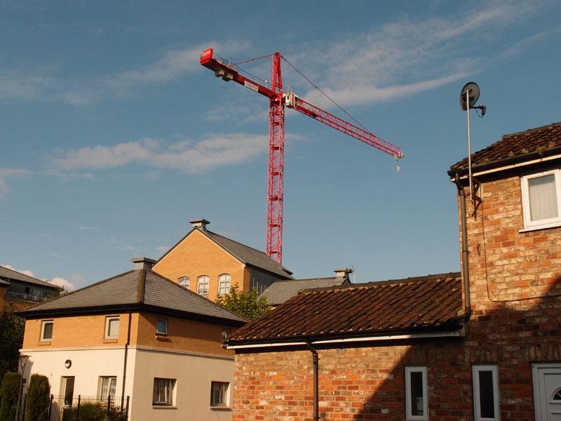 That crane again