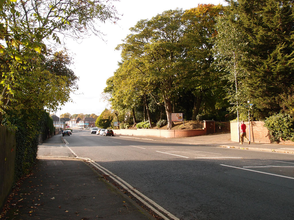 Approaching Acomb: Acomb Road, near the tree-lined Carlton Tavern site