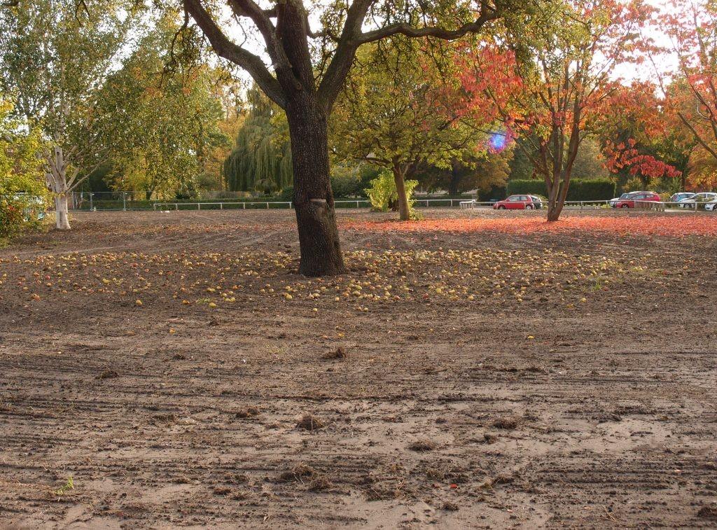 bootham-park-court-site-111015.jpg