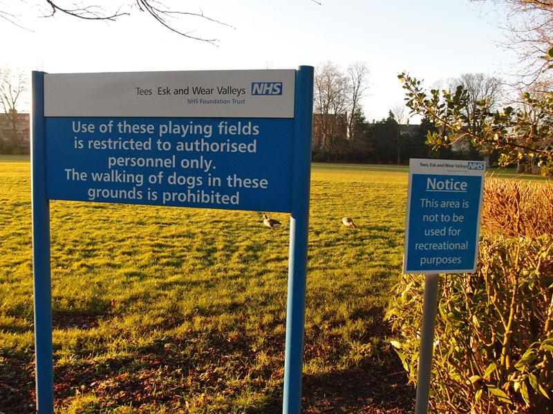 bootham-park-signs-250117-800.jpg