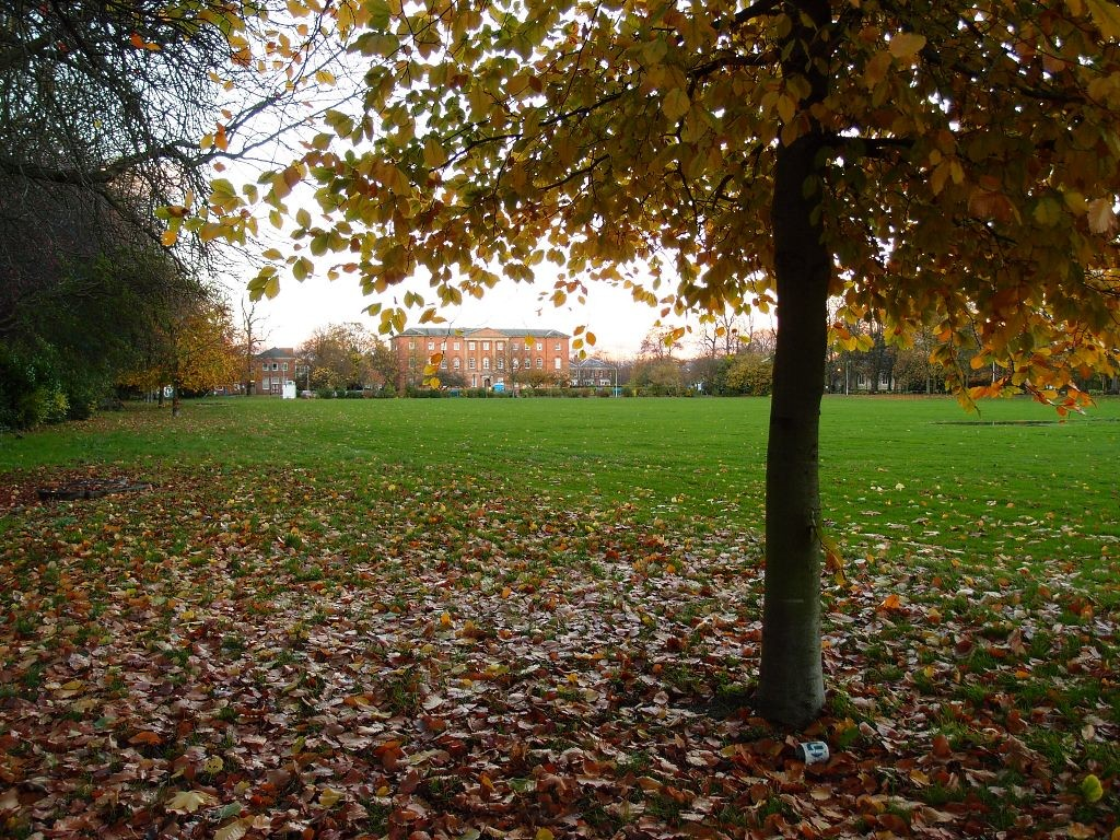 Bootham Park, 7 Nov 2015