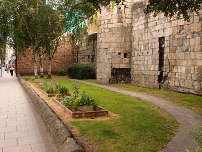 Garden area, by abbey wall