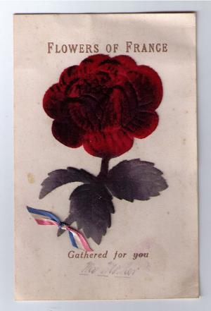 card-flowers-of-france_600