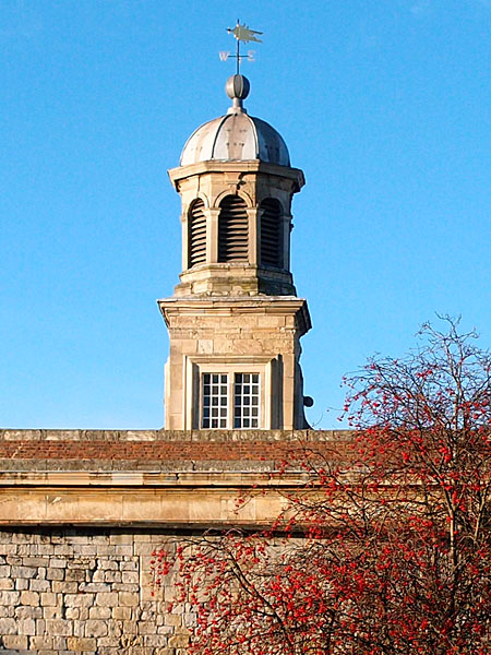 18th century clock tower, blue sky, red berries