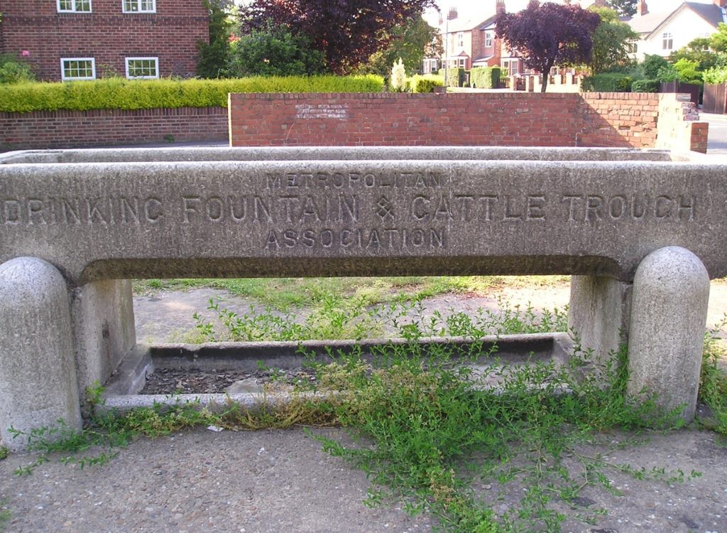Cattle trough, Acomb, 3 July 2006
