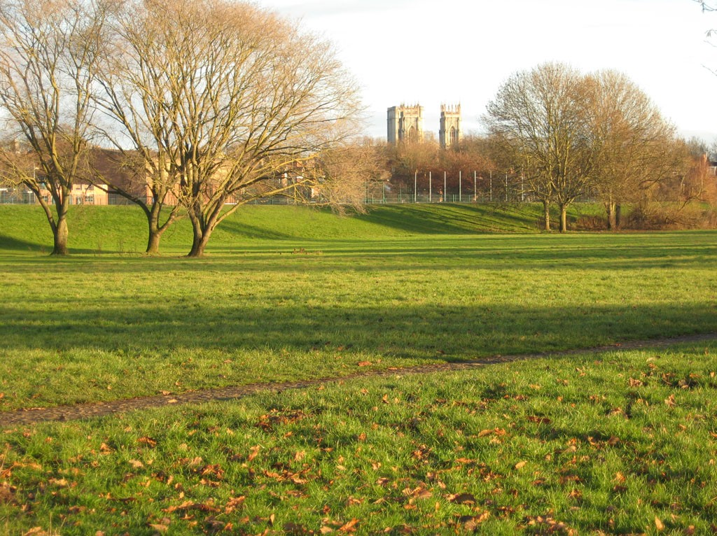 Grass and trees with cathedral towers on horizon