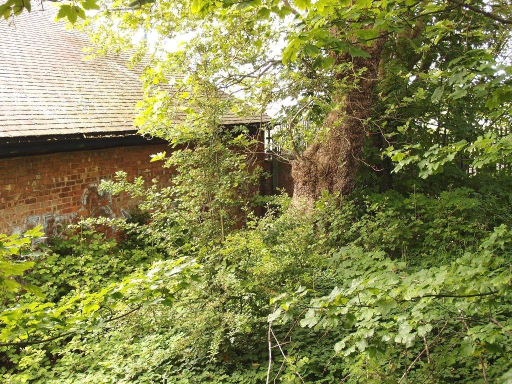 Edge of carriageworks site, near Upper St Paul's garden and park, 16 June 2016