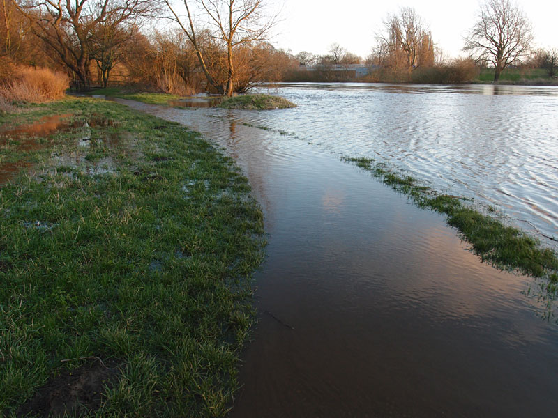 Flood, paths, Clifton ings, 24 Dec 2014