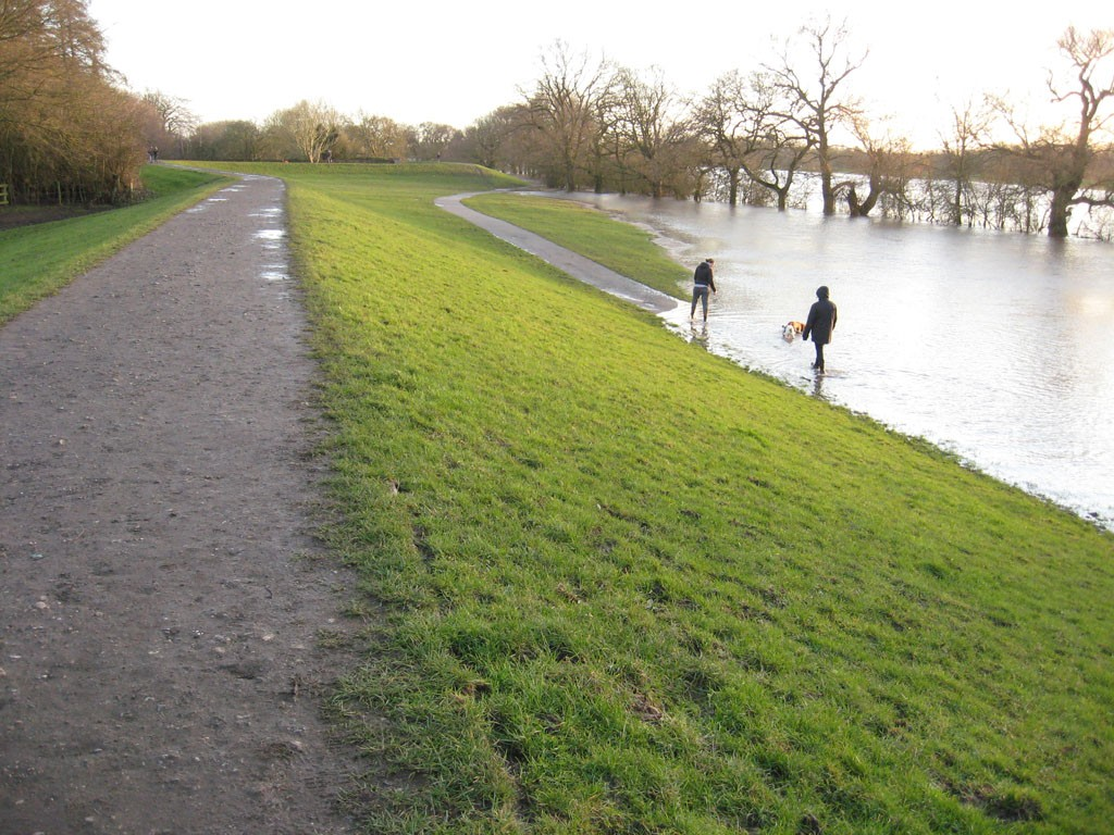 Couple and dog at edge of flood water
