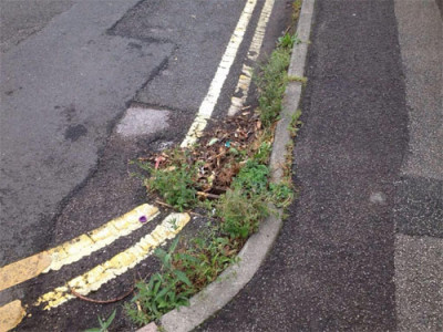 Drain covered in weeds and debris