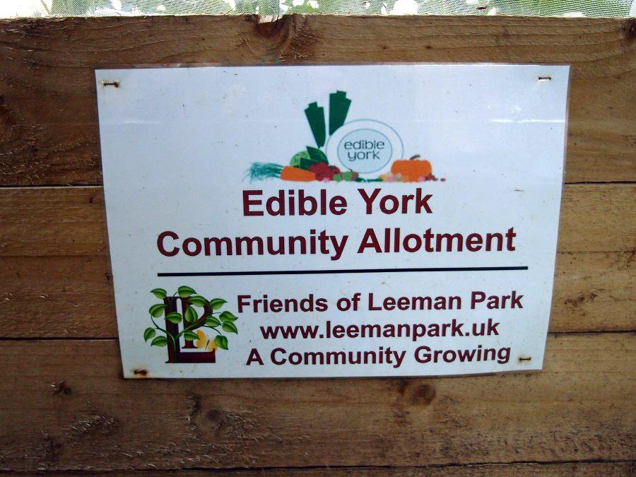 'A Community Growing', 4 June 2016