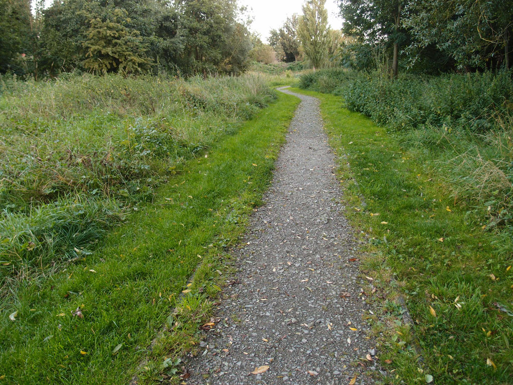 Path through Millennium Green, 8 Sept 2017