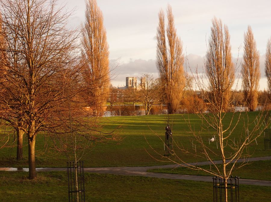 View across grass and trees to cathedral