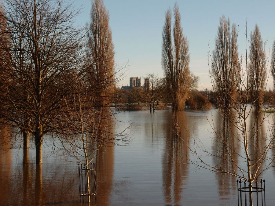 Minster and trees, floodwater