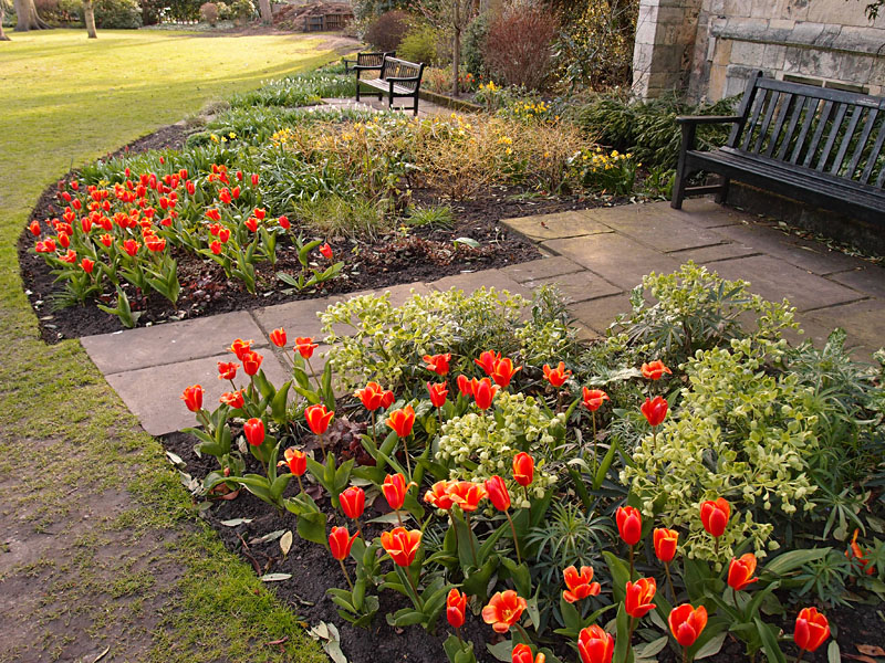 Museum Gardens, 2 April 2015