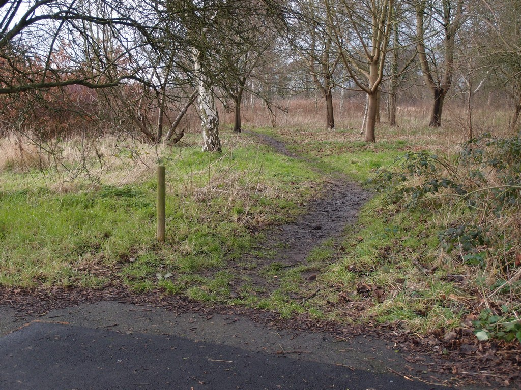 From Fylingdale Avenue's pavement, onto the muddy track