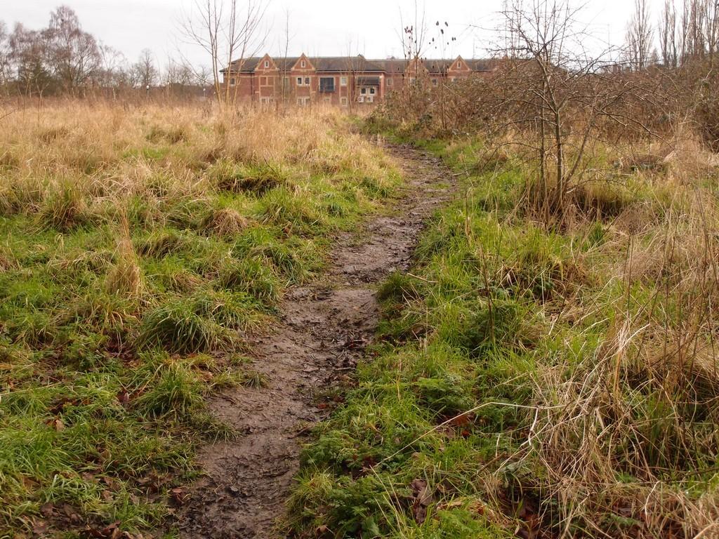 Pathway, Clifton Park, 24 Jan 2016