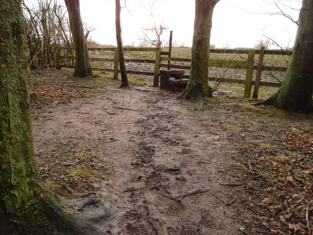 Stile into Rawcliffe Meadows, 24 Jan 2016