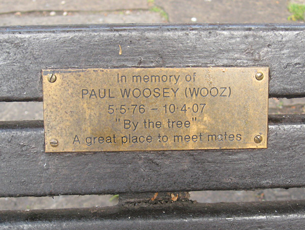 paul-wooseys-bench-130613-600