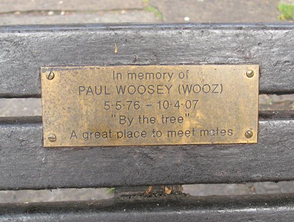 paul-wooseys-bench-130613-600