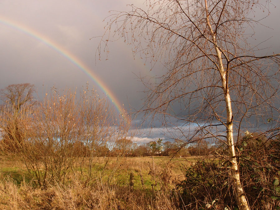 Rainbow over Clifton Park, Christmas Day 2017