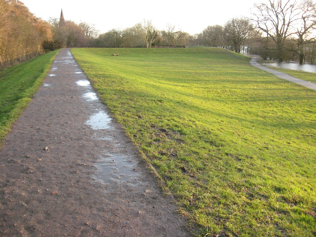 Green grass not covered by floodwater