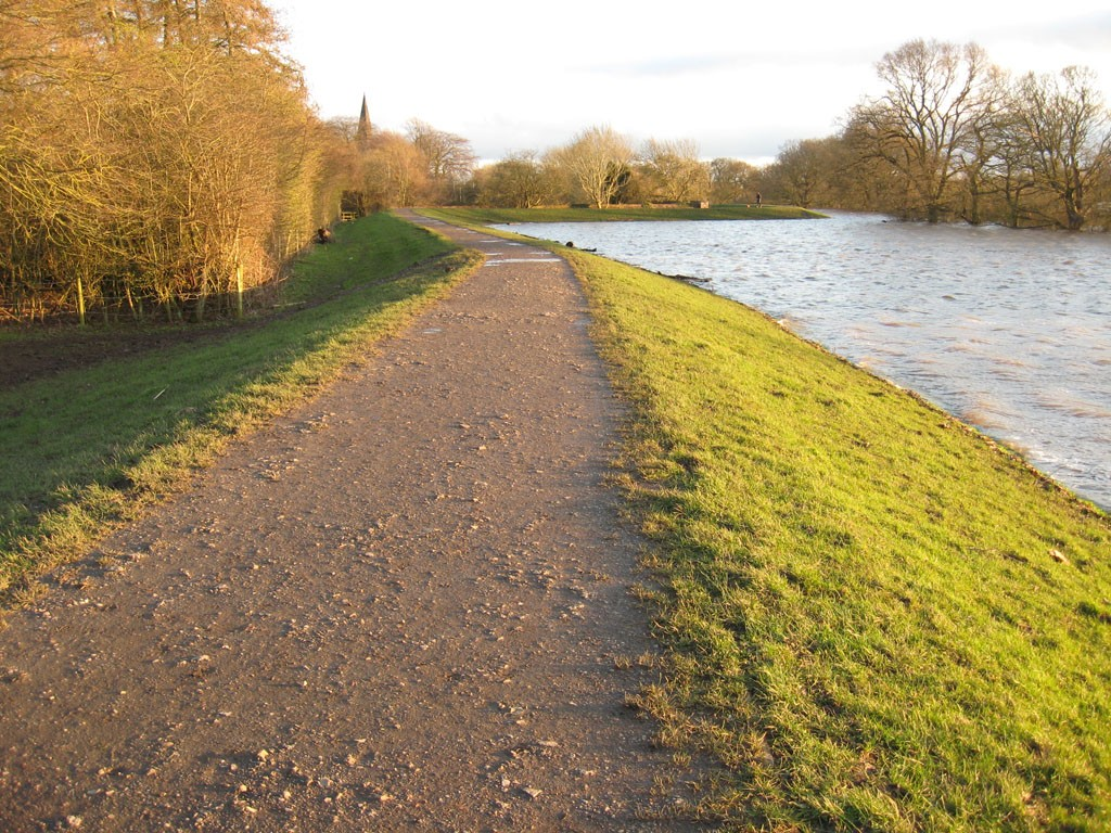 Grassed area covered by floodwater