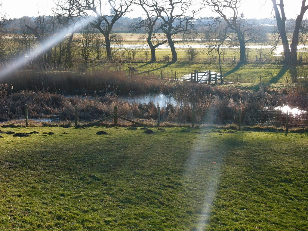 Rawcliffe Meadows and Clifton ings, Jan 2019