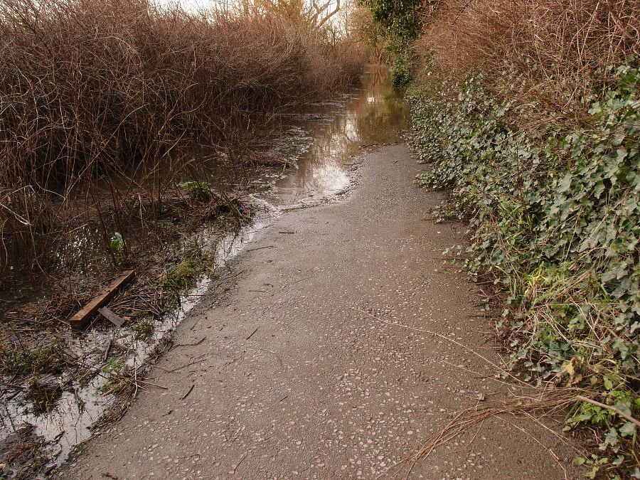 Riverside path, with floodwater