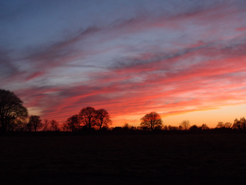 Sunset, from Millfield Lane, 2 Dec 2014