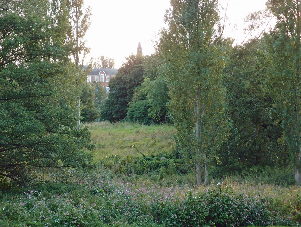 View across Millennium Green with Poppleton Road School in the distance