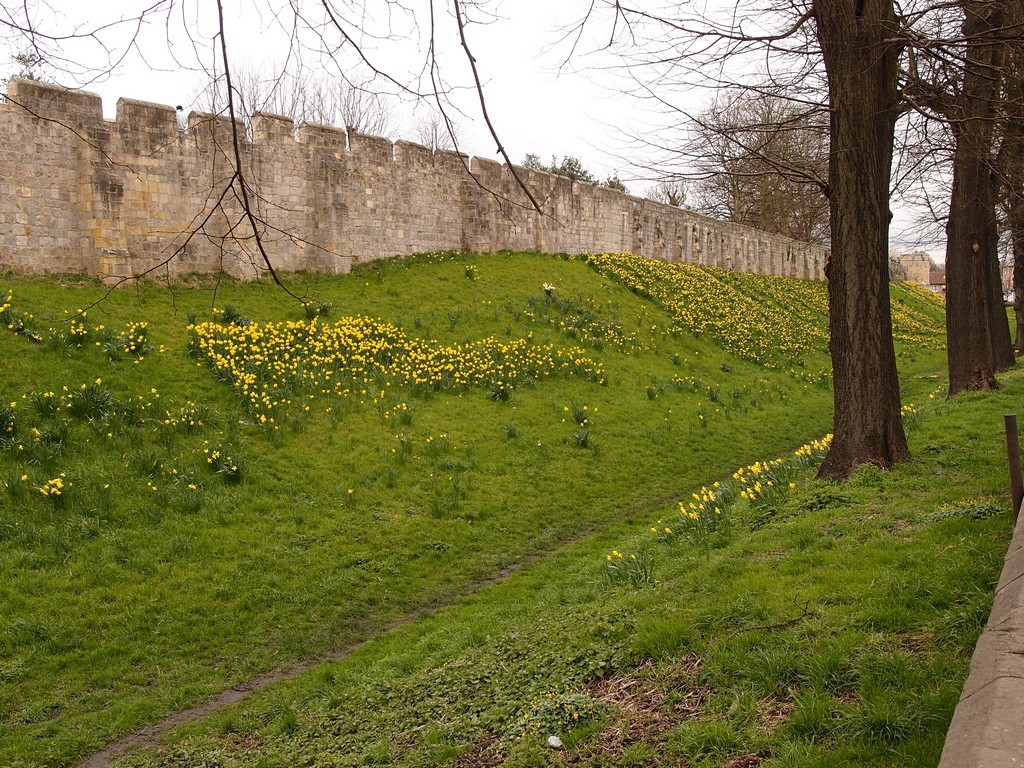 walls-moat-lord-mayors-walk-290316.jpg